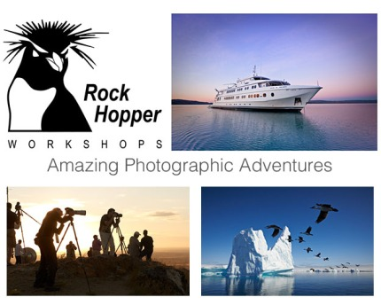 Rockhopper_LuLa_Header_photo